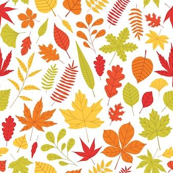 さまざまな種類と白い背景の色の落ち葉でエレガントなシームレスパターン。