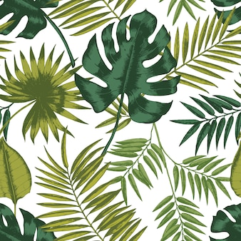 Elegant seamless pattern with leaves of tropical rainforest plants