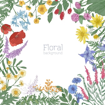 カラフルな咲く野生の牧草地の花で飾られたエレガントな正方形のフレーム