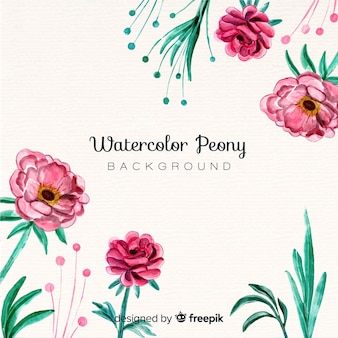 Elegant watercolor peony flowers background