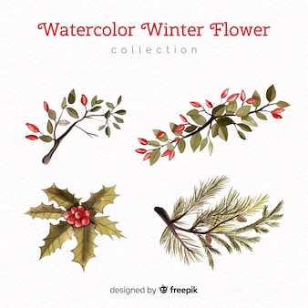Elegant watercolor winter flower collection