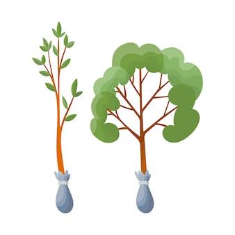 Элемент садового набора. сельскохозяйственный инструмент для ухода за садом, красочные плоские иллюстрации. садовый элемент декоративной рассады деревьев