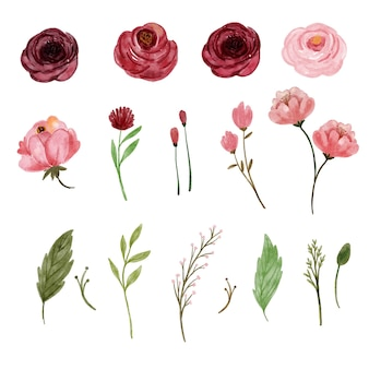Element of romantic watercolor flower in red and pink