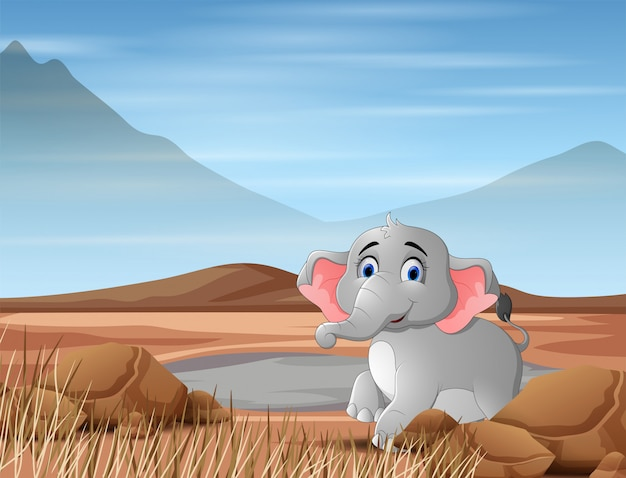 Elephant animal cartoon in the dry land