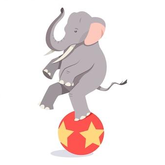 Elephant balances on the ball.