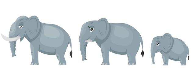 코끼리 가족 측면보기 흰색 절연