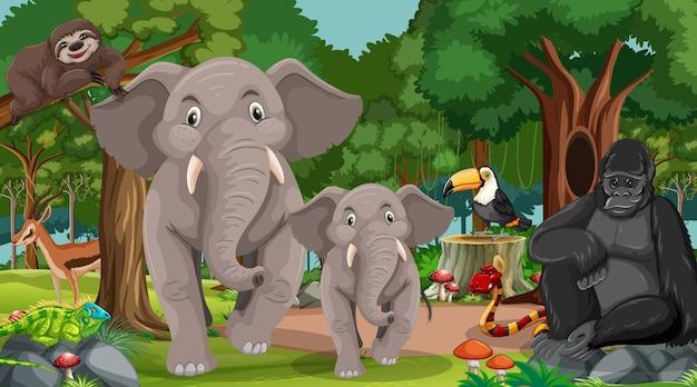 Семья слонов с другими дикими животными в лесной сцене