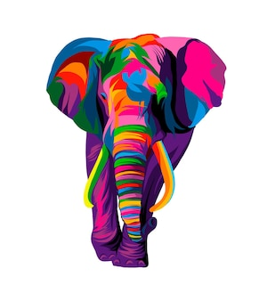 Elephant from multicolored paints splash of watercolor colored drawing realistic