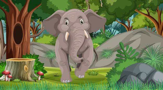 많은 나무가 있는 숲이나 열대 우림 장면의 코끼리