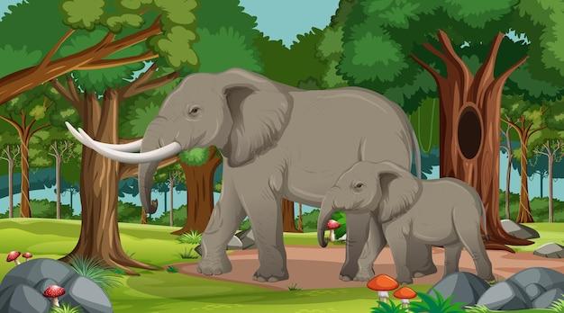 多くの木がある森や熱帯雨林のシーンで象 Premiumベクター