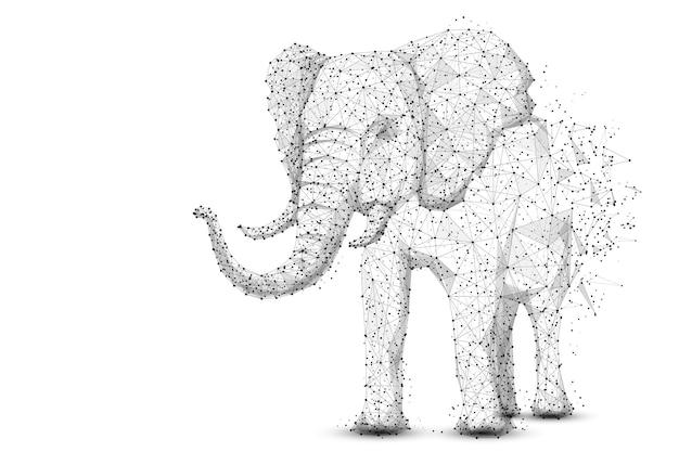 白い背景のアフリカとインドの動物の低ポリワイヤーフレームから分離された象