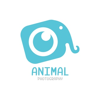 Elephant logo, animal photography logo template isolated