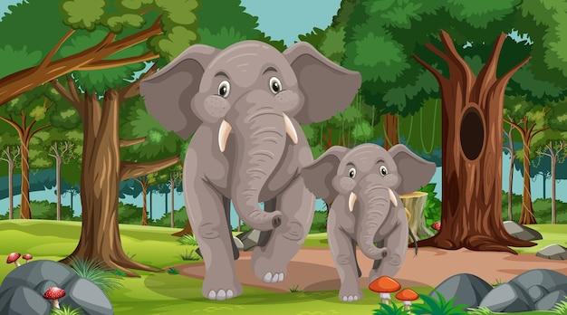 많은 나무가 있는 숲이나 열대 우림 장면에서 코끼리 엄마와 아기