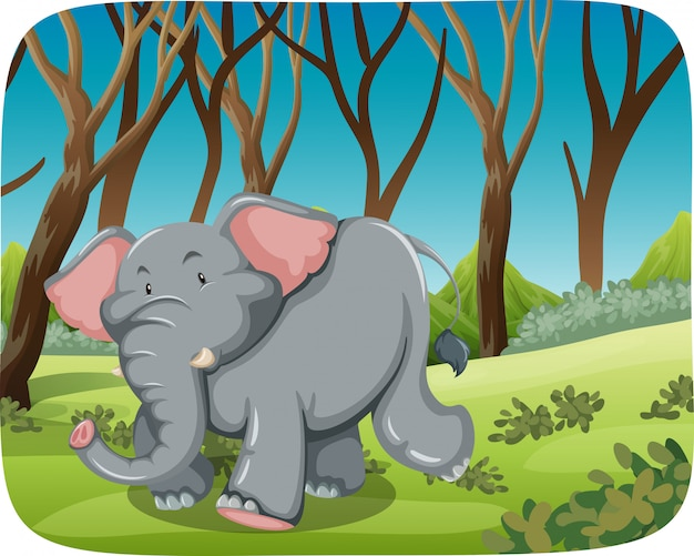 Elephant running in the forest