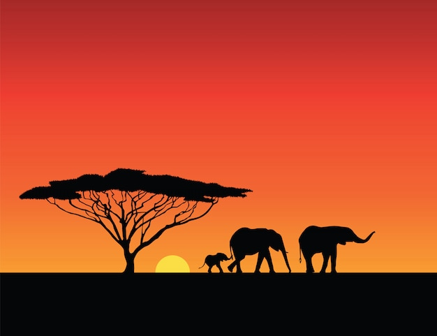 Elephants silhouettes, sunset illustration