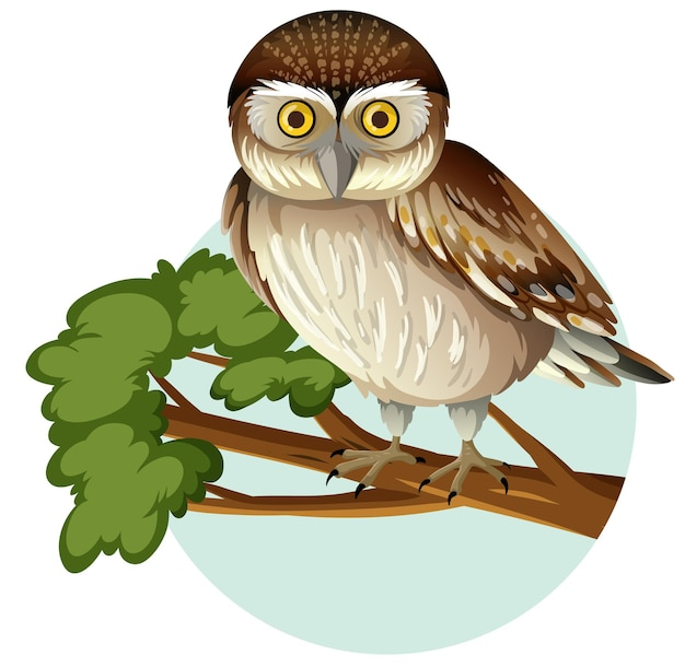 Elf owl standing on branch in cartoon style isolated on white background