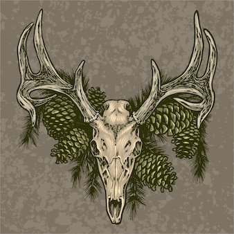 Elk skull and pine cone illustration