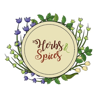 Emblem herbs and spices plants and organ food