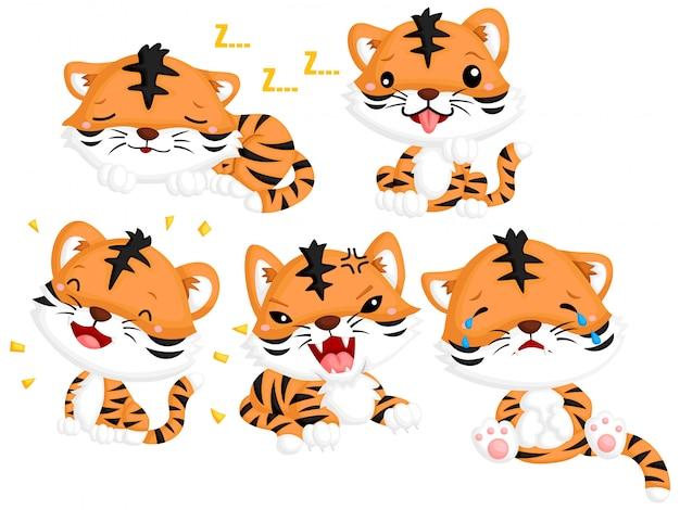 Emotional tiger