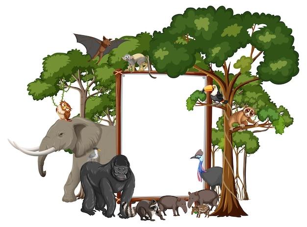 白の野生動物と熱帯雨林の木と空のバナー