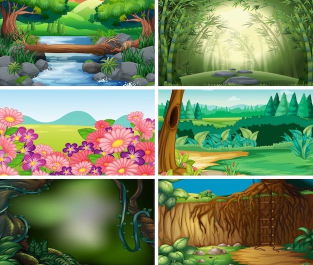 Empty, blank landscape nature scene or background