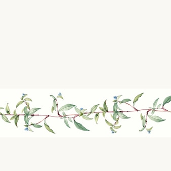 Empty botanical background design vector