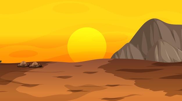 Пустой пустынный лесной пейзаж во время заката