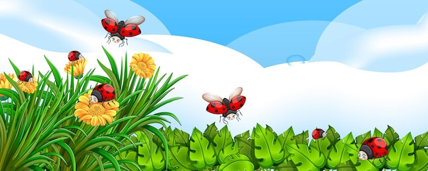 Empty nature illustration with many lady bugs