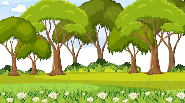 많은 나무가 있는 빈 자연 공원 장면
