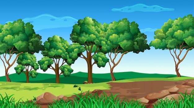 Empty  nature scenery