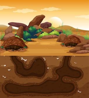 Пустая подземная нора для животных