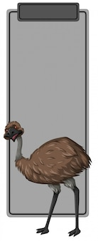 Emu on grey border