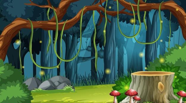 魅惑の森の風景の背景