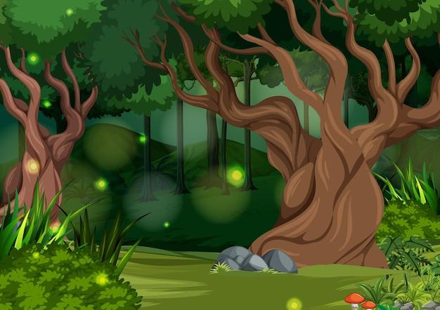 마법에 걸린 숲 풍경 배경