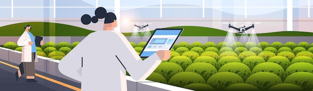 Engineers controlling agricultural drones sprayers quad copters flying to spray chemical fertilizers in greenhouse smart farming innovation technology