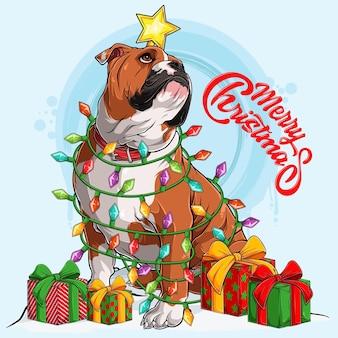 잉글리시 불독 개가 앉아 있고 옆에 크리스마스 트리 조명과 선물로 둘러싸여 있습니다.
