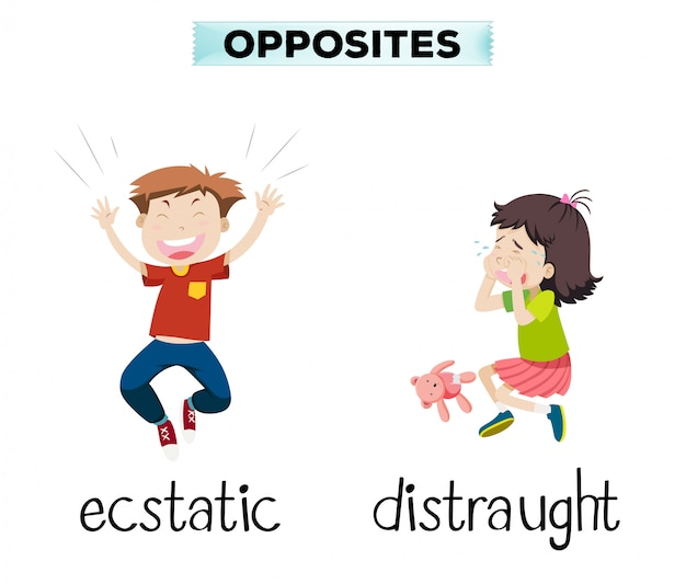 English opposite word of ecstatic and distraught