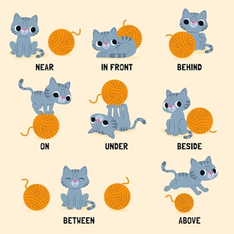English preposition for children with cat