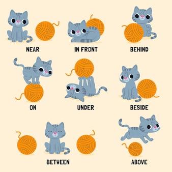 猫の子供のための英語の前置詞