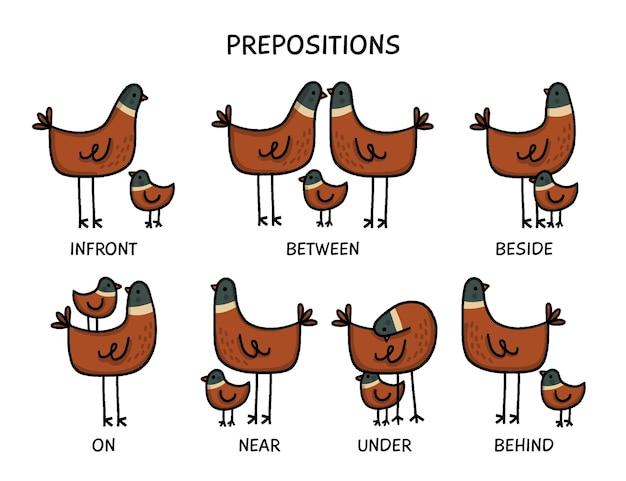 English preposition with cute birds