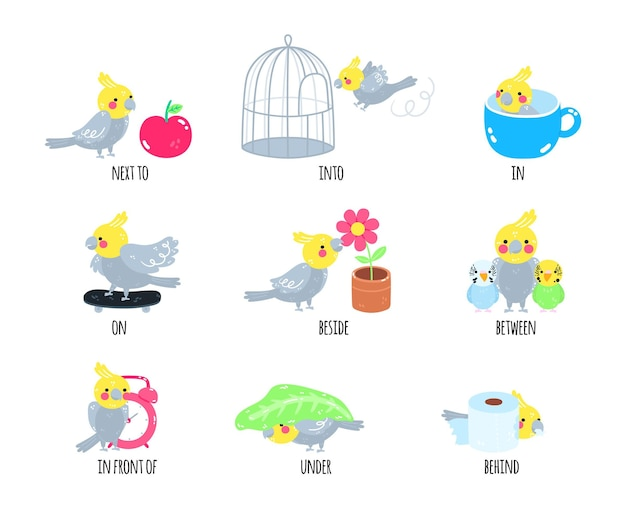 English prepositions for kindergarten kids
