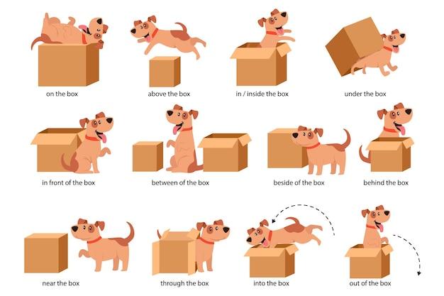 Английские предлоги места наглядного пособия для детей. симпатичный персонаж собаки в разных позах, играя с картонной коробкой. изучение концепции иностранного языка. отдельные векторные иллюстрации шаржа, набор