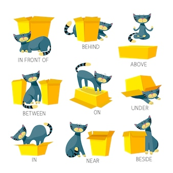 English prepositions of place visual aid for children with cute cat character in different poses playing with carton box
