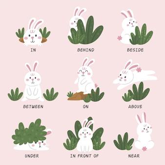 토끼 그림이있는 영어 전치사
