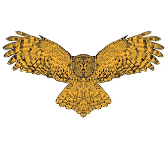 Engrave isolated owl illustration