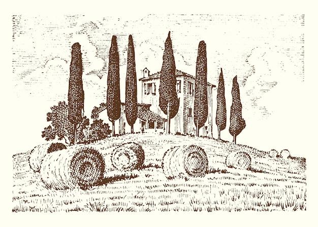 레이블에 대 한 오래 된 스케치와 빈티지 스타일에 그려진 새겨진 손. 필드 배경 및 사이프러스 나무. 수확과 건초 더미. 포도원 또는 시골집의 농촌 풍경.