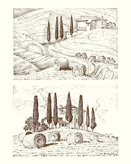 Engraved hand drawn in old sketch and vintage style for label. fields background and cypress trees. harvesting and haystacks.