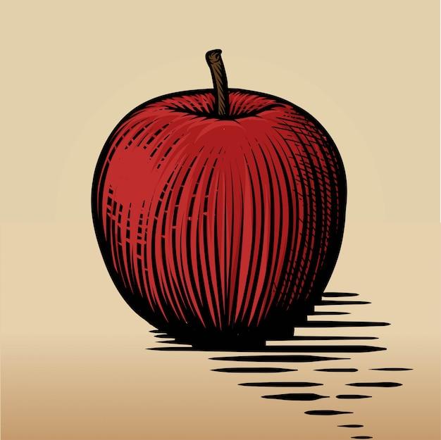 Engraved red apple. vector engraved illustration.
