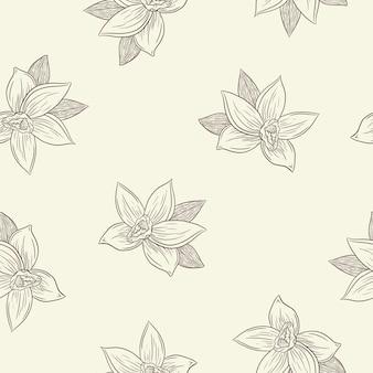 새겨진된 바닐라 꽃 완벽 한 패턴입니다. 배경, 포장지, 메뉴, 레시피, 직물, 섬유, 웹, 장식, 벽지, 스파 및 미용 제품을 위한 라인 아트 바닐라 꽃. 프리미엄 벡터