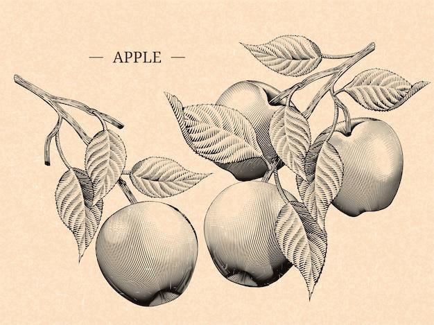 リンゴの葉、天然の果物の要素を刻む